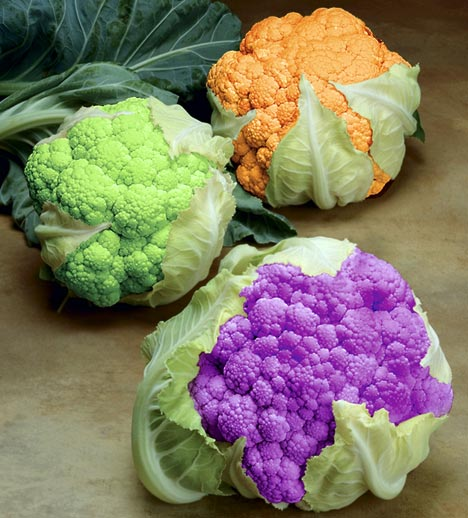 Coloured-Cauliflowers